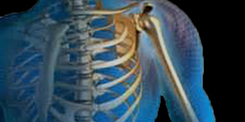 Cranial Structural Bodywork